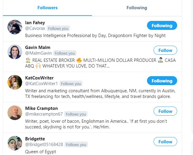 A screenshot of followers on Twitter